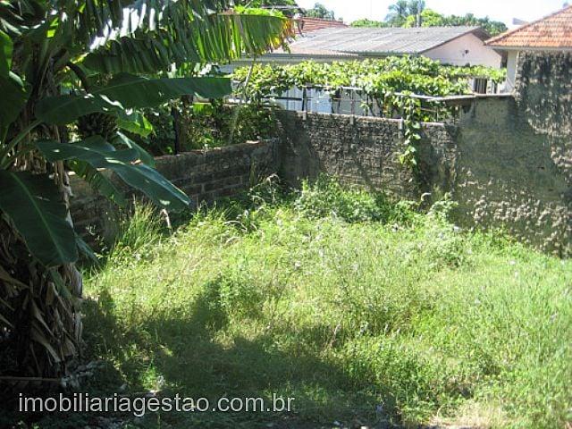 Imobiliária Gestão - Casa, São Luis, Canoas - Foto 5