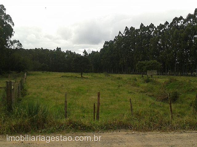 Terreno, Tabai, Nova Santa Rita (155451)