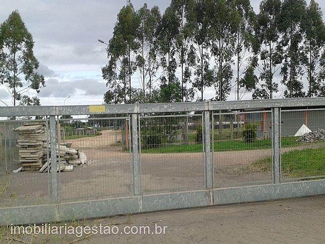 Terreno, Tabai, Nova Santa Rita (155451) - Foto 2