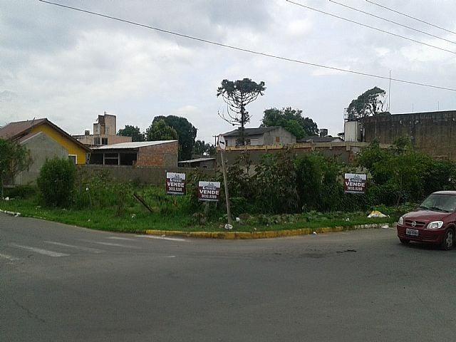 Imobiliária Gestão - Terreno, Rio Branco, Canoas - Foto 6
