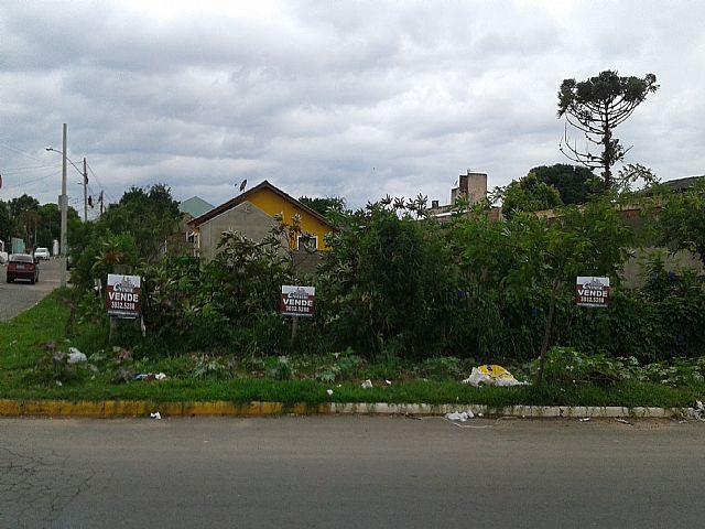 Imobiliária Gestão - Terreno, Rio Branco, Canoas - Foto 4