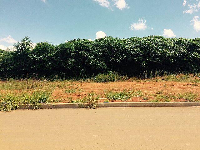 Terreno, Estância Velha, Canoas (220099) - Foto 10