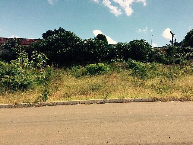 Terreno, Estância Velha, Canoas (220099) - Foto 9
