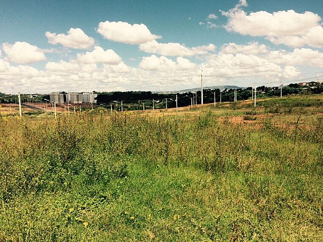 Imobiliária Gestão - Terreno, Estância Velha - Foto 6