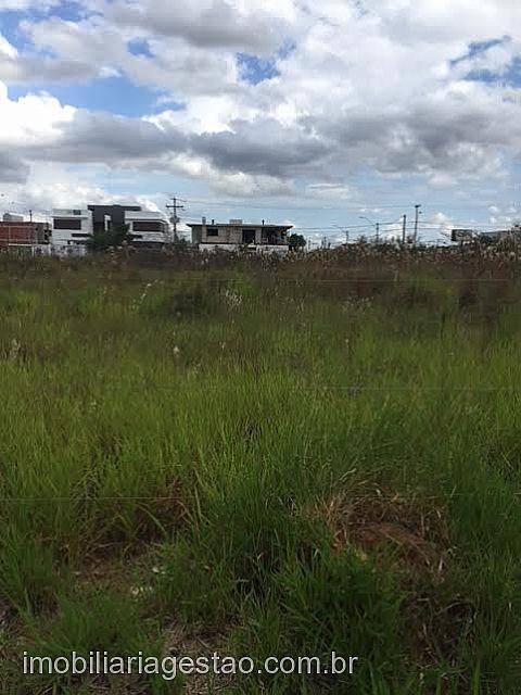 Imobiliária Gestão - Casa, Igara, Canoas (238055)