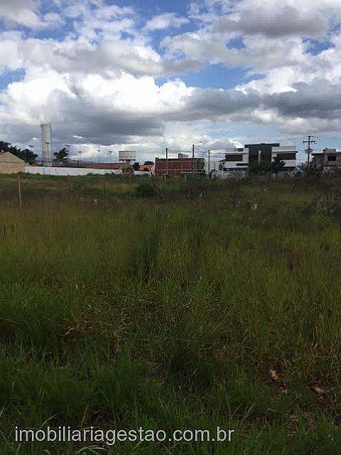 Imobiliária Gestão - Casa, Igara, Canoas (238055) - Foto 2