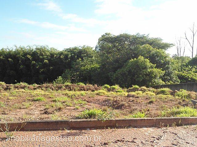 Terreno, Berto Círio, Nova Santa Rita (244146) - Foto 2
