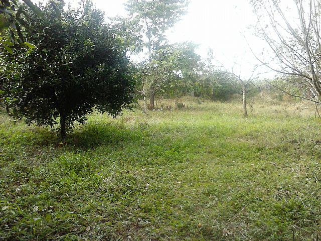Casa, Caju, Nova Santa Rita (263151) - Foto 9