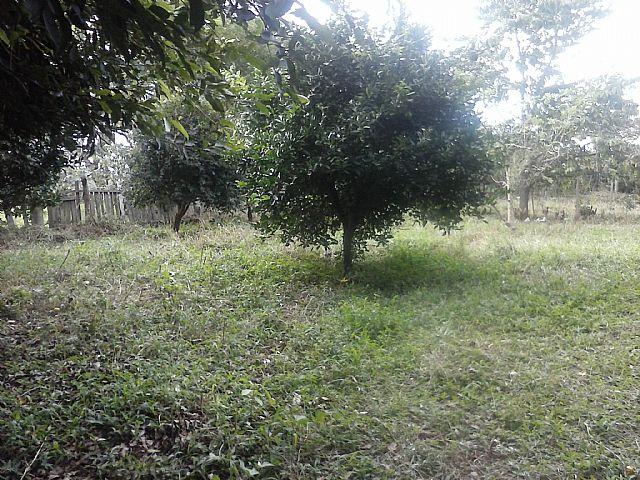 Casa, Caju, Nova Santa Rita (263151) - Foto 8