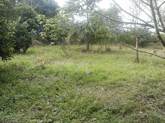 Casa, Caju, Nova Santa Rita (263151) - Foto 7