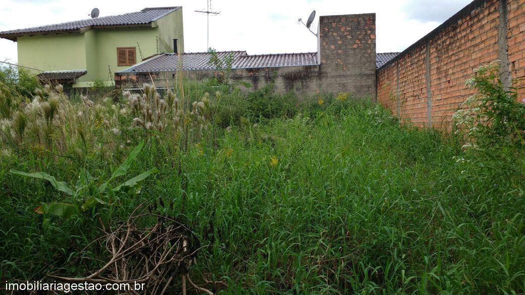 Imobiliária Gestão - Terreno, Igara, Canoas - Foto 5