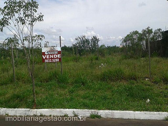 Imobiliária Gestão - Terreno, Mont Serrat, Canoas - Foto 5