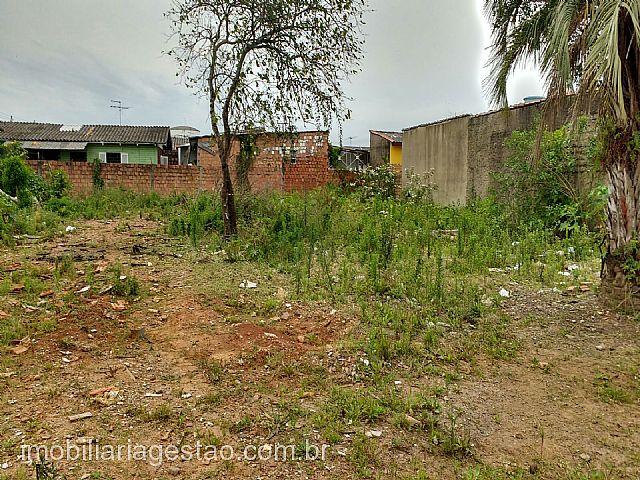 Imobiliária Gestão - Terreno, Harmonia, Canoas - Foto 3
