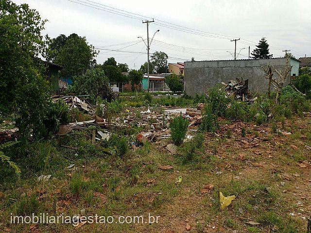 Imobiliária Gestão - Terreno, Harmonia, Canoas - Foto 2