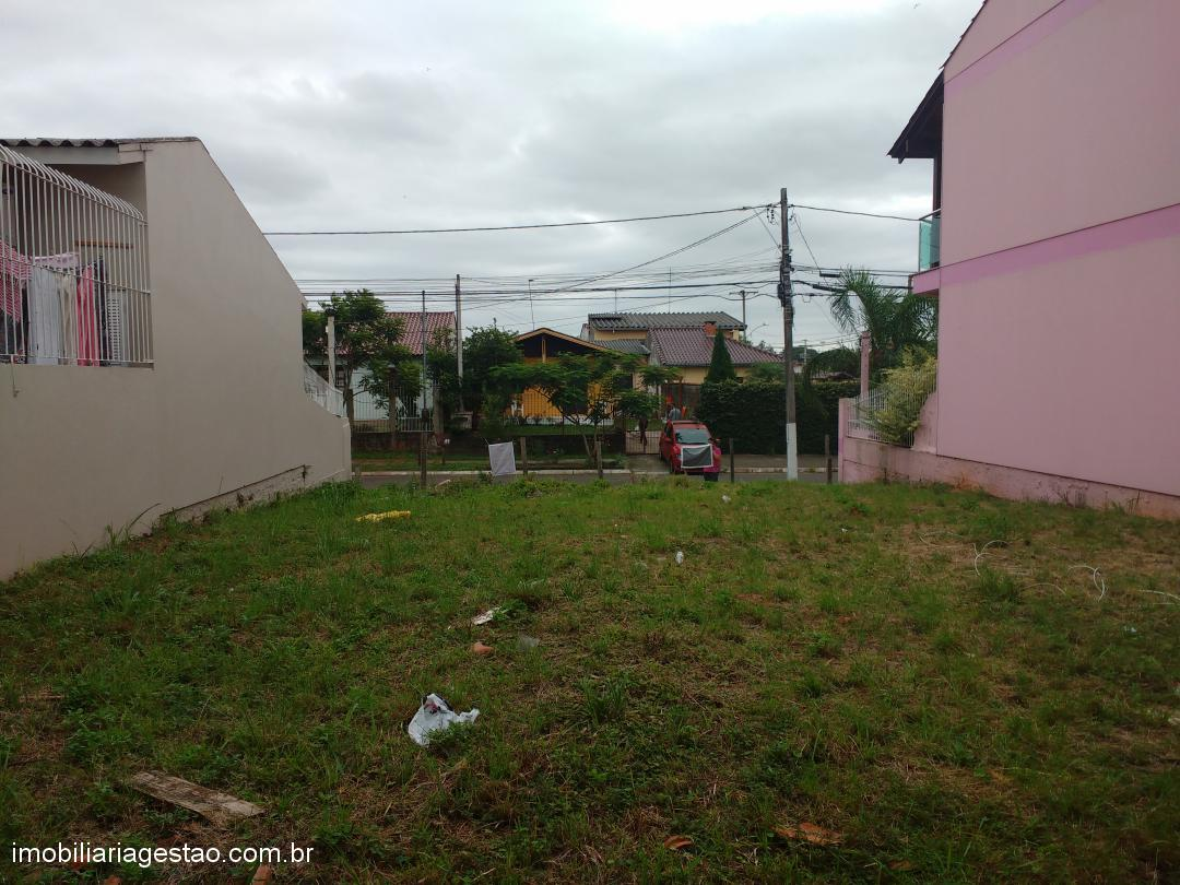 Imobiliária Gestão - Terreno, Igara, Canoas - Foto 2