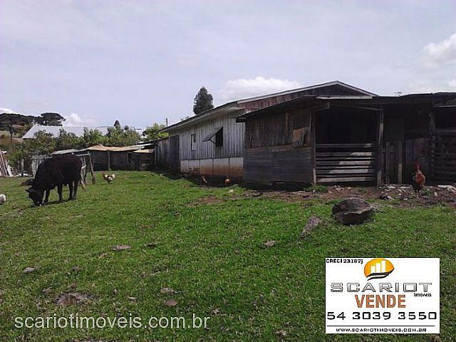 Chácara 3 Dorm, Formigueri, São Marcos (135225) - Foto 2