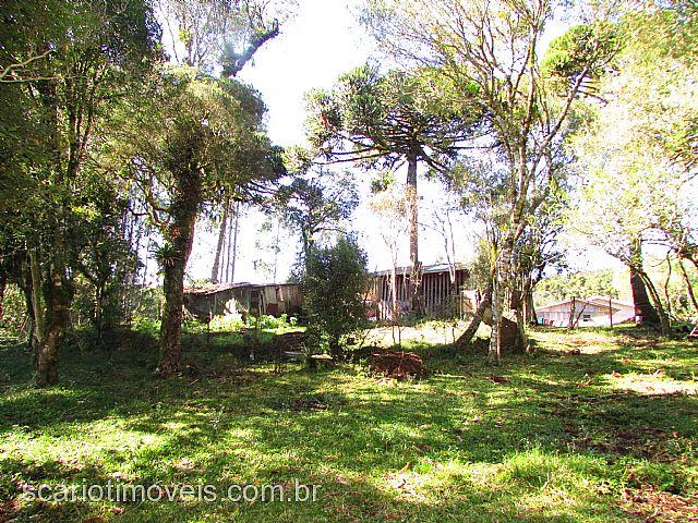 Chácara 4 Dorm, ., Cambara do Sul (138668) - Foto 2