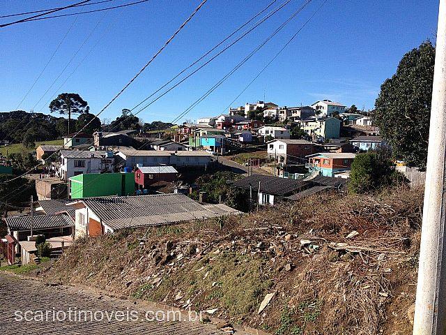 Scariot Imóveis - Terreno, Serrano, Caxias do Sul - Foto 3