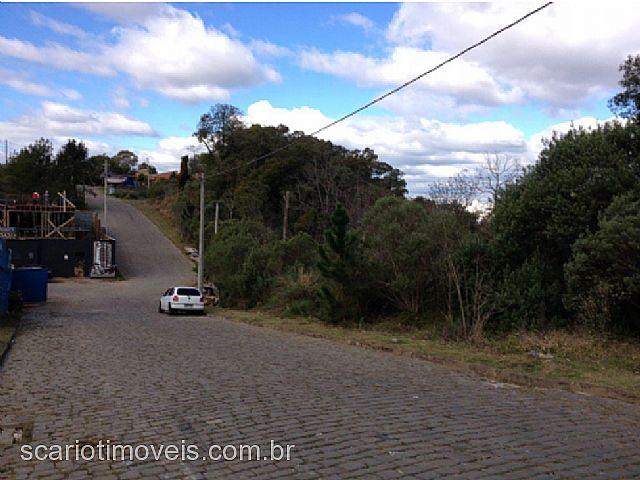 Scariot Imóveis - Terreno, Vila Horn (201426)