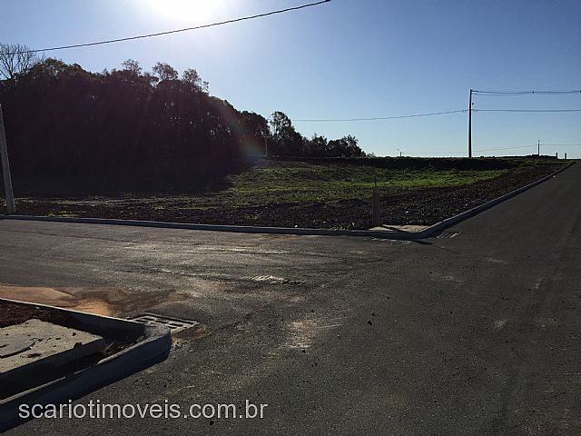 Scariot Imóveis - Terreno, Monte Bérico (266500) - Foto 2