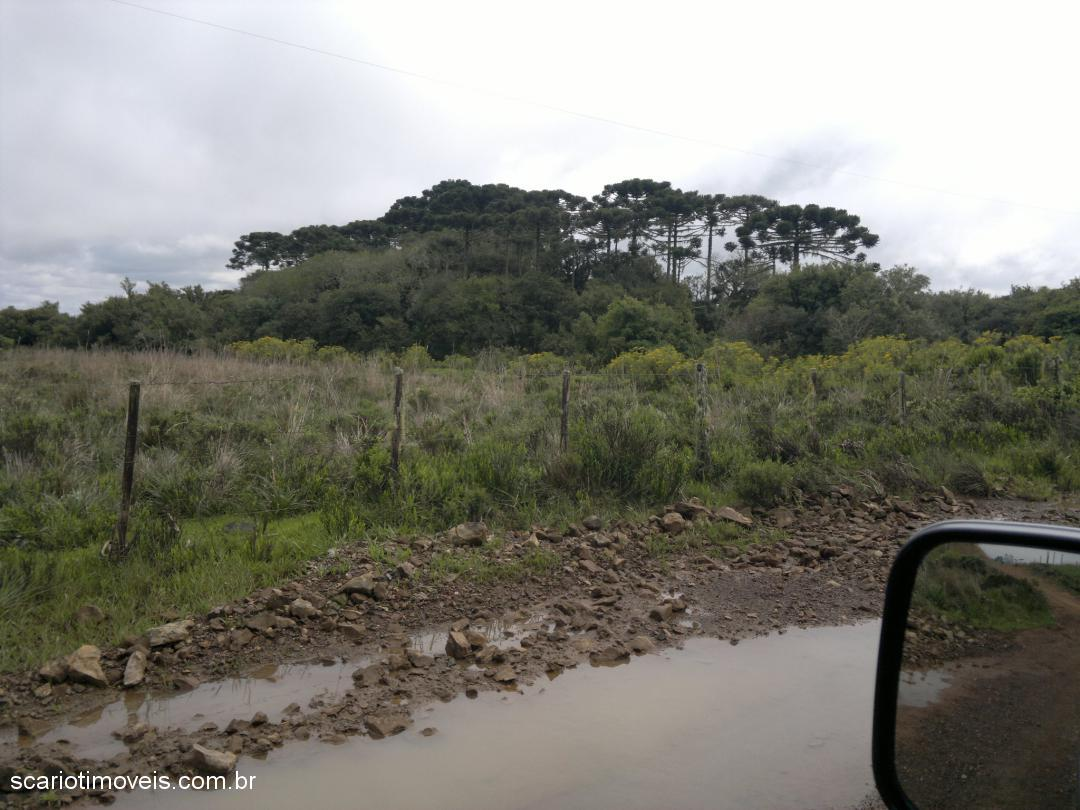 Chácara, ., Cambara do Sul (276539) - Foto 6
