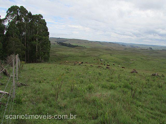 Scariot Imóveis - Casa, ., Cambara do Sul (289839) - Foto 3