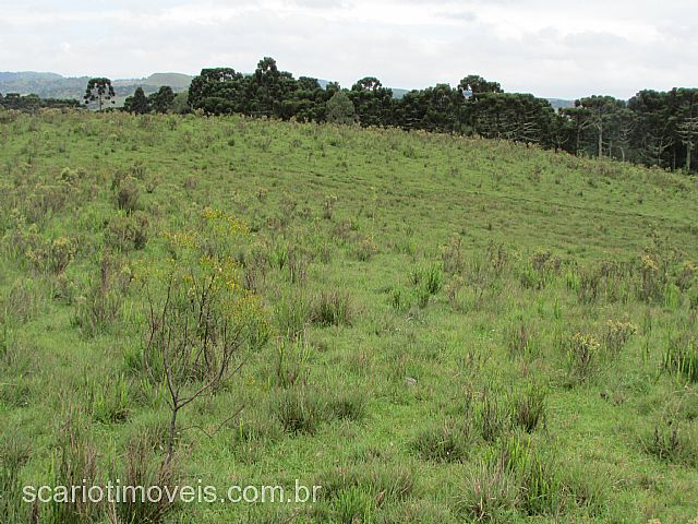 Casa, ., Cambara do Sul (289842) - Foto 4