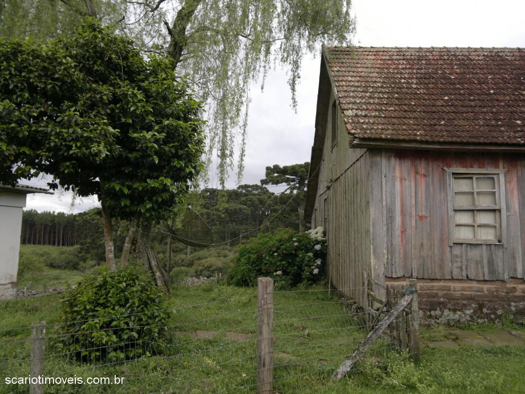 Casa 3 Dorm, ., Cambara do Sul (303771) - Foto 6