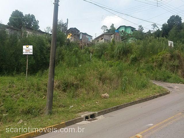 Terreno, N. Sra das Graças, Caxias do Sul (47156) - Foto 5