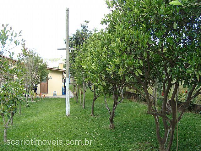 Terreno 3 Dorm, Santa Catarina, Caxias do Sul (70332) - Foto 9