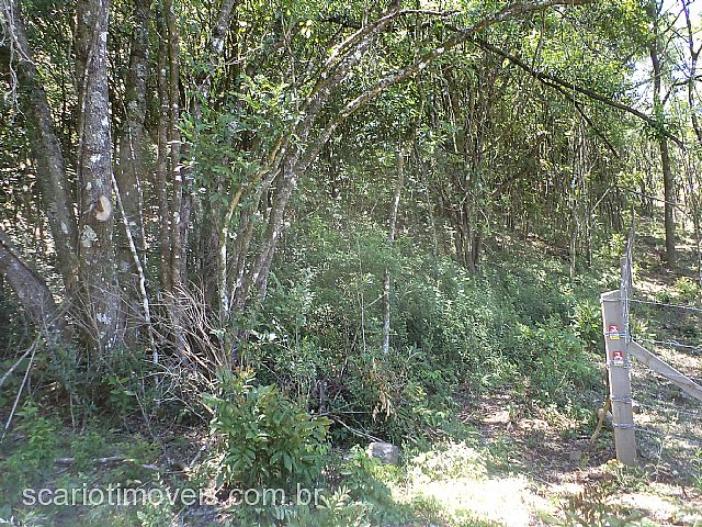 Scariot Imóveis - Chácara, Fazenda Pedras Brancas - Foto 6