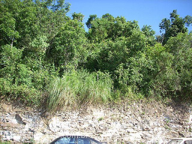 Terreno, Oriental, Caxias do Sul (79087)
