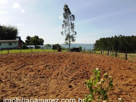 Chácara 2 Dorm, Campo da Brazina, Ararica (365091) - Foto 6