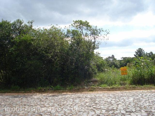Terreno, Próximo a Faixa, Ararica (84583) - Foto 4