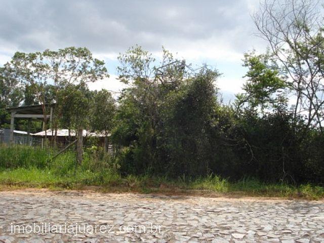Terreno, Próximo a Faixa, Ararica (84583) - Foto 8