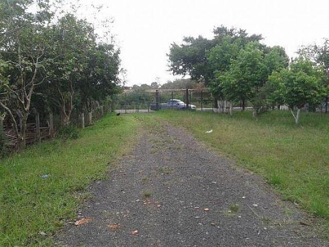 Imobiliária Lottici - Casa, Olaria, Canoas - Foto 4