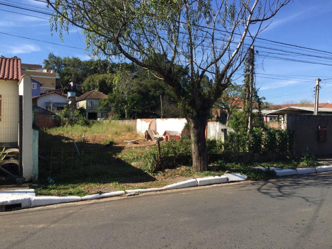 Imobiliária Lottici - Terreno, Canoas (246751) - Foto 2