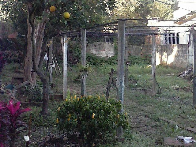 Imobiliária Lottici - Terreno, Igara, Canoas - Foto 3