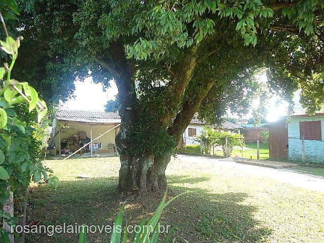 Rosângela Imóveis - Casa 2 Dorm, Sete de Setembro - Foto 4