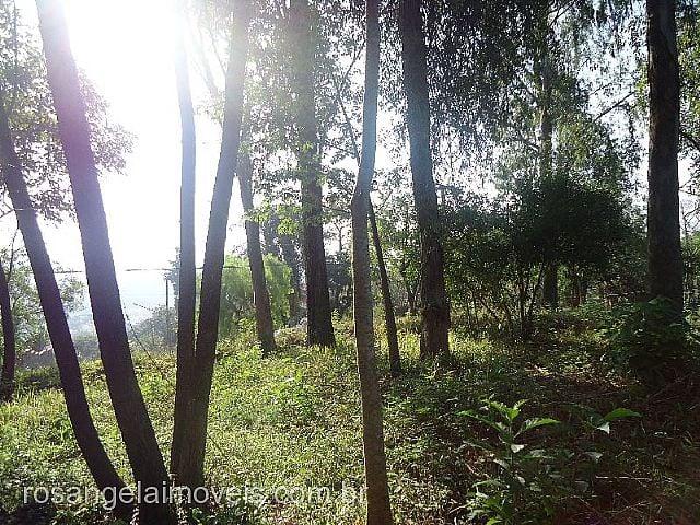 Terreno, Centro, Sapiranga (255734) - Foto 4