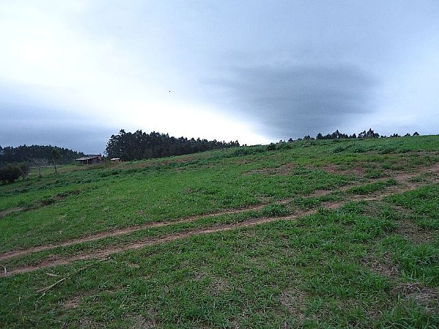 Terreno, Araricá, Ararica (275170) - Foto 6