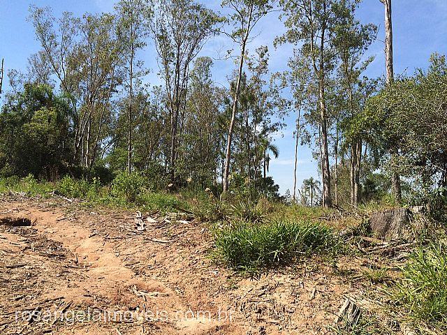 Terreno, Ruralcel, Parobe (278687) - Foto 8