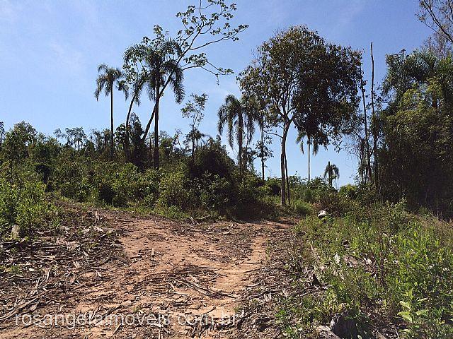Terreno, Ruralcel, Parobe (278687) - Foto 5