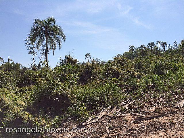 Terreno, Ruralcel, Parobe (278687) - Foto 4