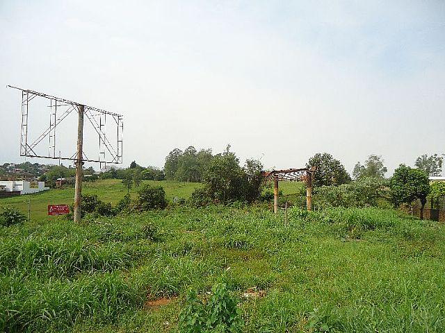 Terreno, Oeste, Sapiranga (279724) - Foto 5