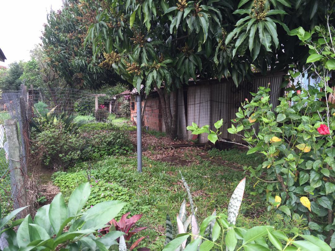 Terreno, Centro, Sapiranga (357979) - Foto 3