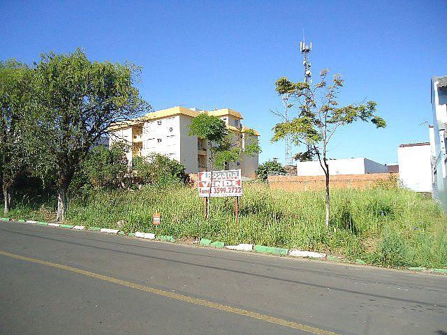 Terreno, Centro, Sapiranga (40995) - Foto 3