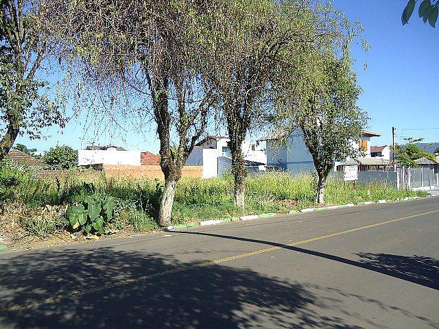 Terreno, Centro, Sapiranga (40995) - Foto 2