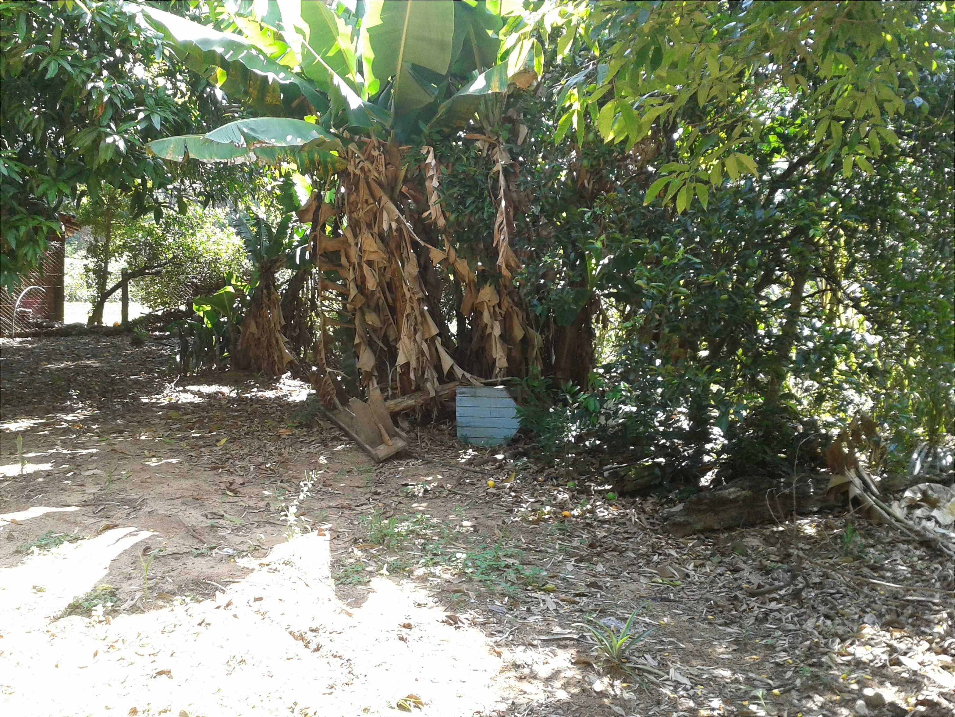Fazenda 2 Dorm, Rincão do Cascalho, Portão (141037) - Foto 9