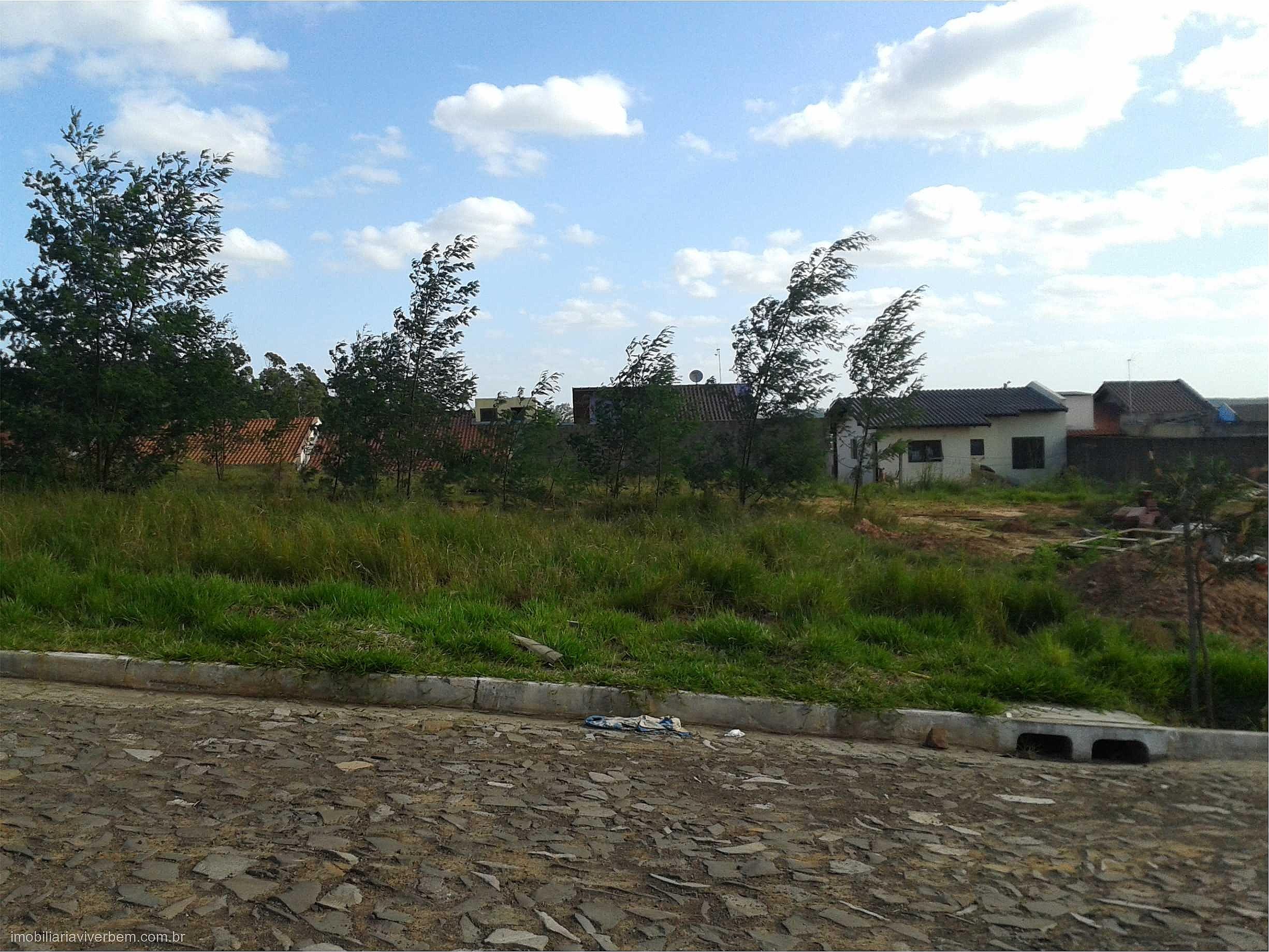 Viver Bem Imóveis - Terreno, Aparecida, Portão - Foto 7